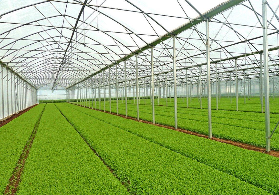 مزایایی نایلون عریض کشاورزی